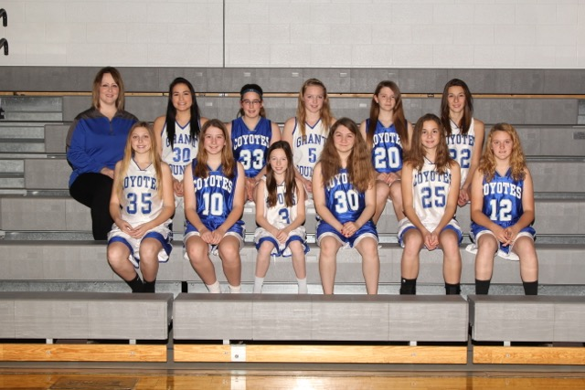 Picture of 2015-2016 Girls Basketball C Team