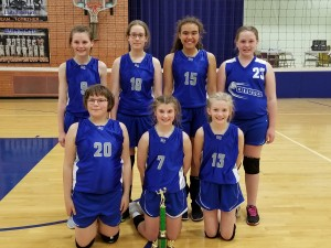 Elementary Volleyball picture