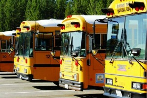 Busses in a line