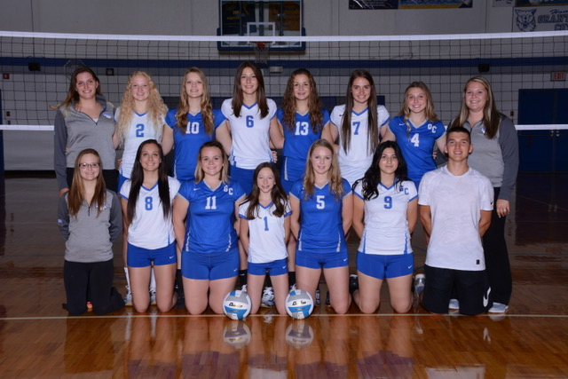 Picture of 2017 Varsity Volleyball Team